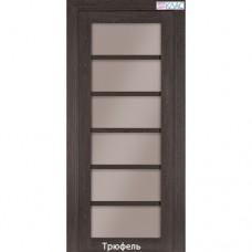 Двері міжкімнатні екошпон №307 скло нано