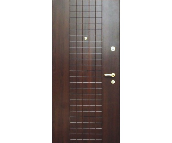 """Двері вуличні """"Еліт"""" модель 170"""